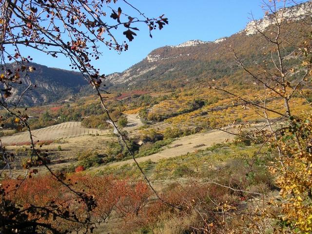 Les Brussets en automne